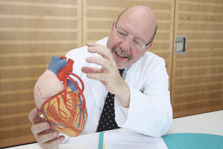 Ein Mediziner erklärt ein Herzmodell